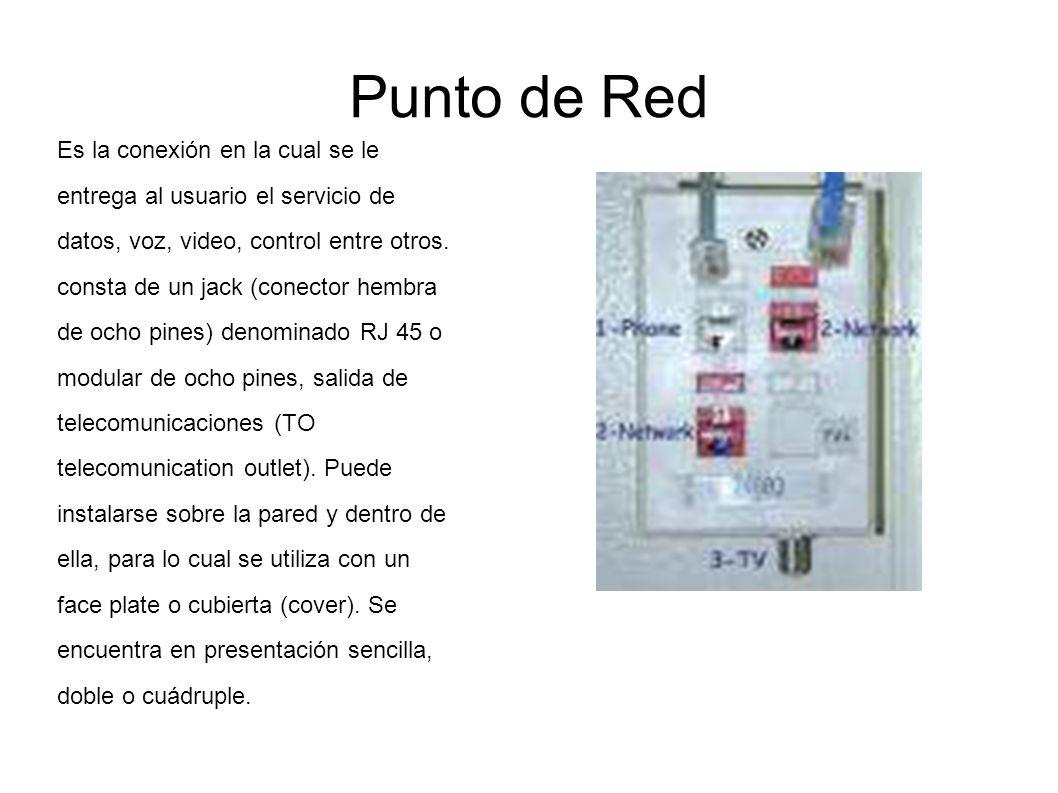 Punto de Red