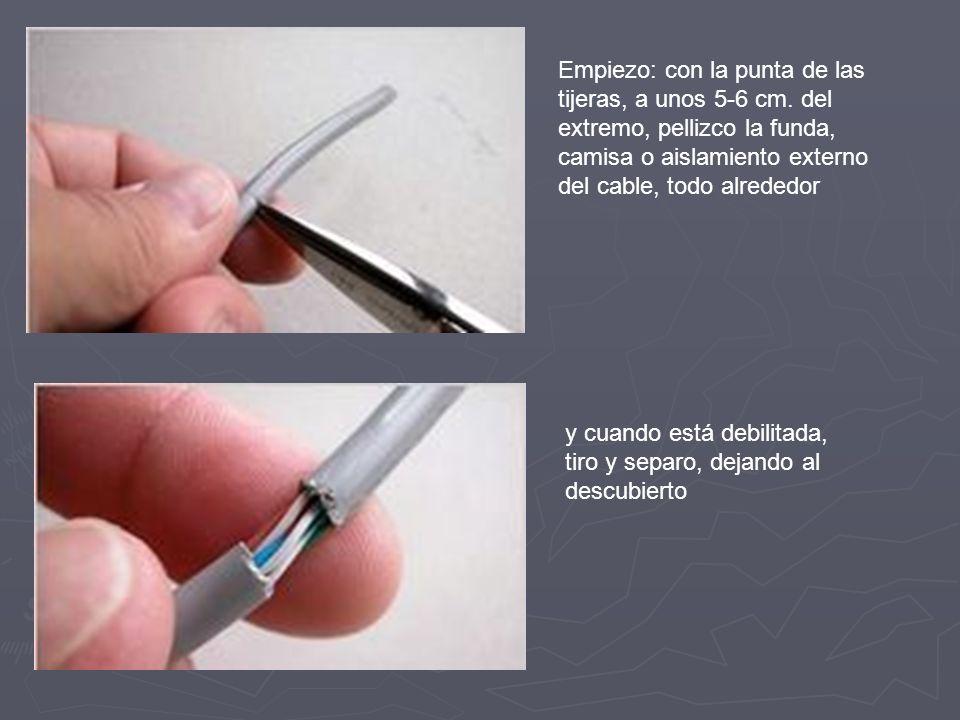Empiezo: con la punta de las tijeras, a unos 5-6 cm