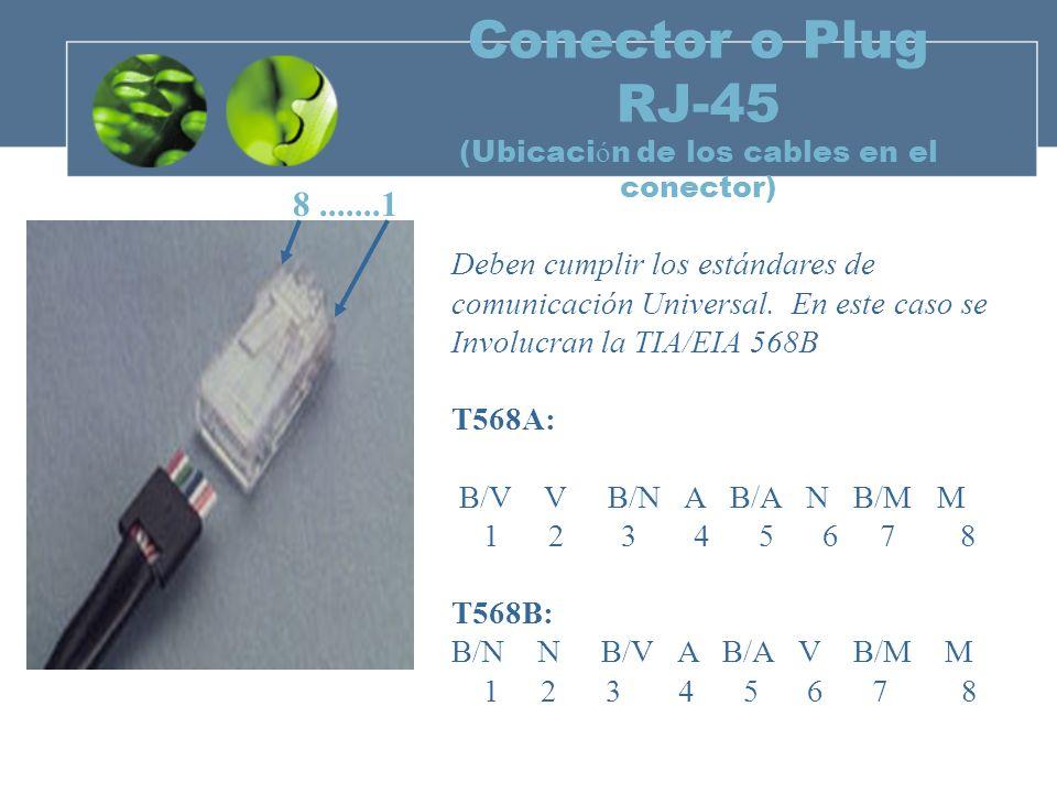 Conector o Plug RJ-45 (Ubicación de los cables en el conector)