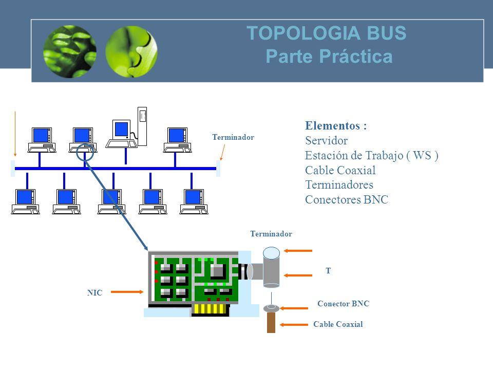 TOPOLOGIA BUS Parte Práctica