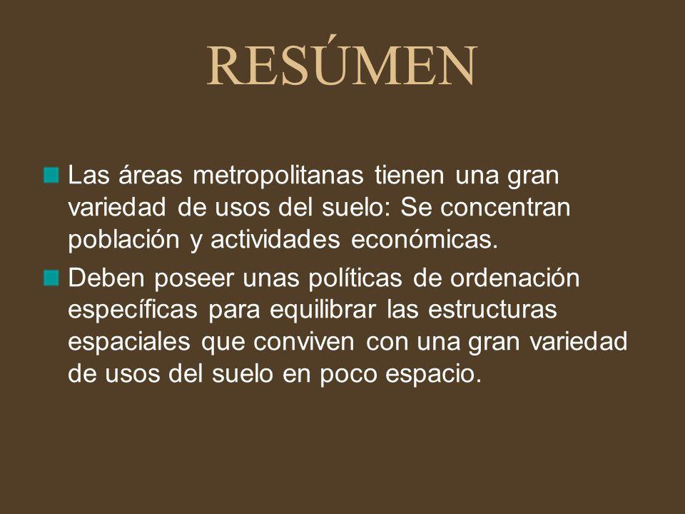 RESÚMEN Las áreas metropolitanas tienen una gran variedad de usos del suelo: Se concentran población y actividades económicas.