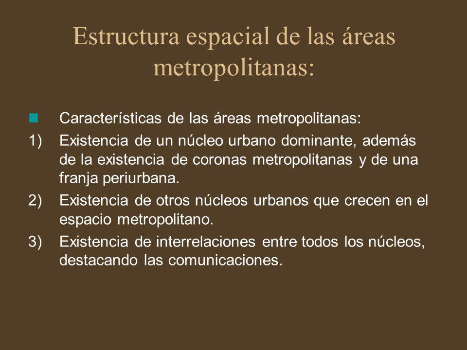 Estructura espacial de las áreas metropolitanas: