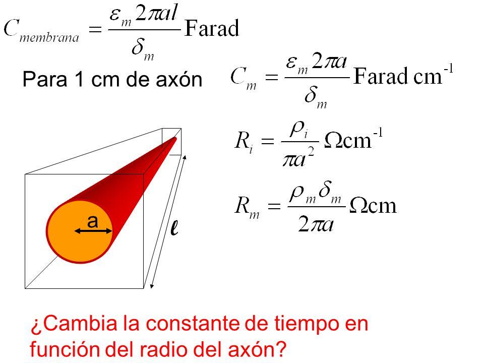 Para 1 cm de axón a l ¿Cambia la constante de tiempo en función del radio del axón