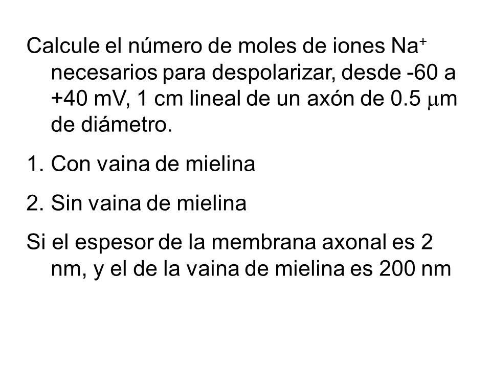 Calcule el número de moles de iones Na+ necesarios para despolarizar, desde -60 a +40 mV, 1 cm lineal de un axón de 0.5 m de diámetro.