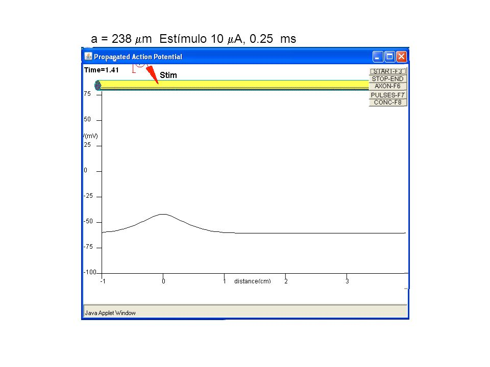 a = 238 m Estímulo 10 A, 0.25 ms
