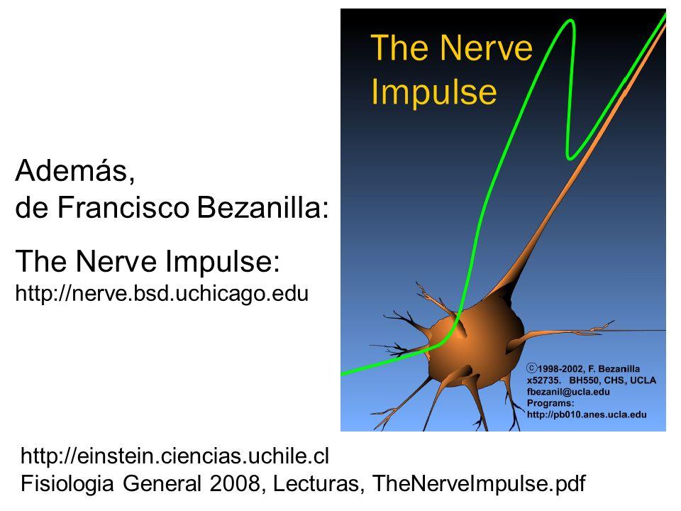 Además, de Francisco Bezanilla: