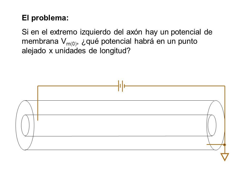 El problema: Si en el extremo izquierdo del axón hay un potencial de membrana Vm(0), ¿qué potencial habrá en un punto alejado x unidades de longitud