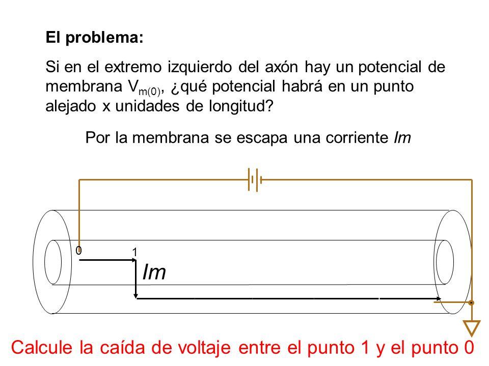 Por la membrana se escapa una corriente Im