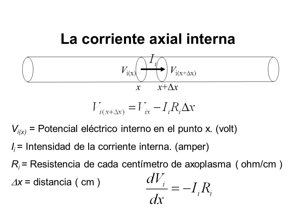 La corriente axial interna