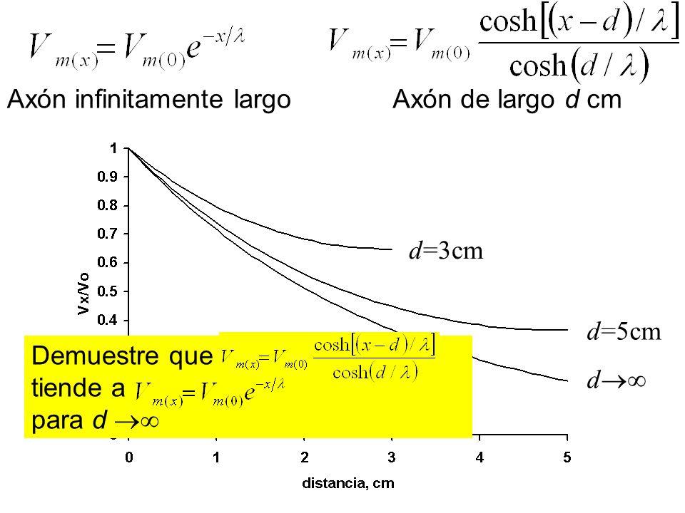 Axón infinitamente largo