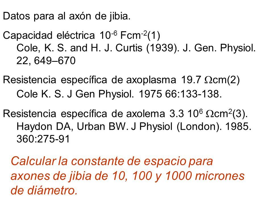 Datos para al axón de jibia.