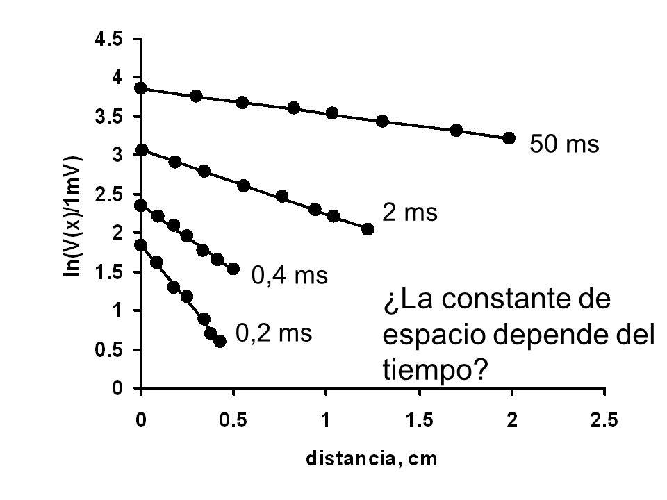 ¿La constante de espacio depende del tiempo