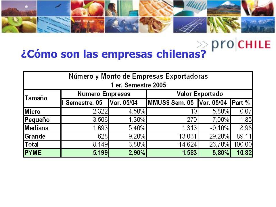 ¿Cómo son las empresas chilenas