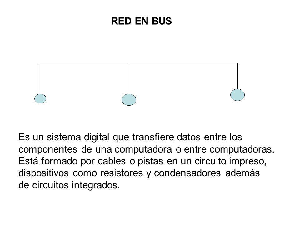 RED EN BUS