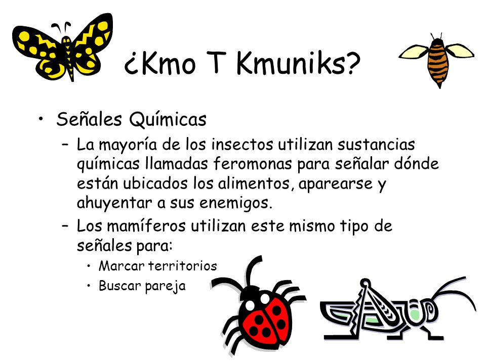 ¿Kmo T Kmuniks Señales Químicas