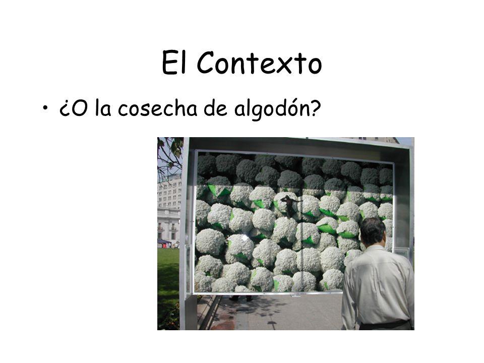El Contexto ¿O la cosecha de algodón