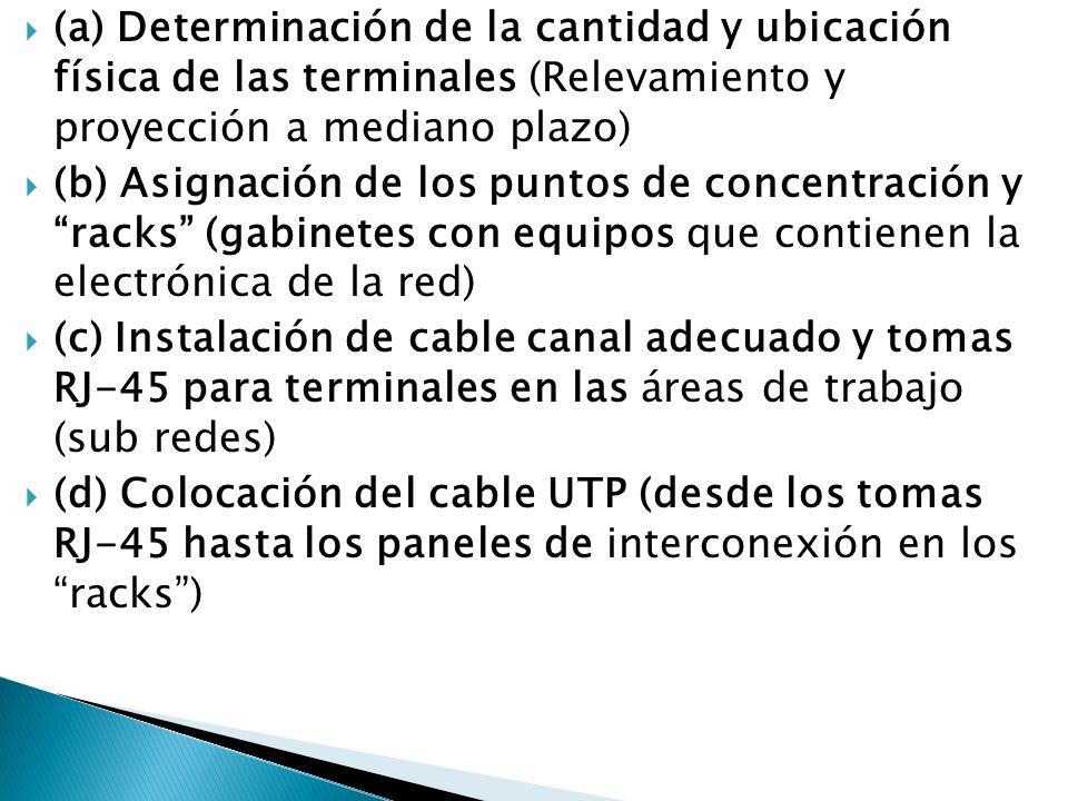 (a) Determinación de la cantidad y ubicación física de las terminales (Relevamiento y proyección a mediano plazo)