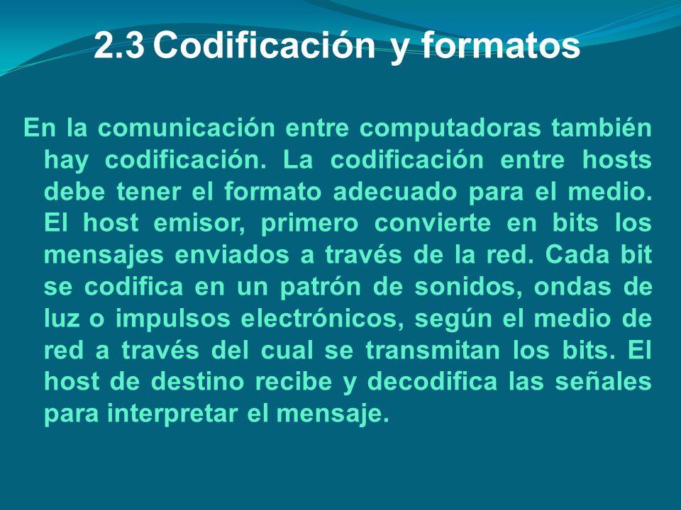 2.3 Codificación y formatos