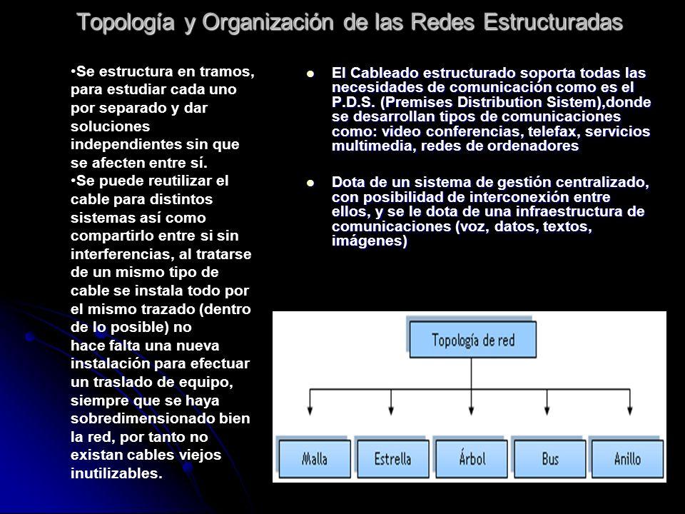 Topología y Organización de las Redes Estructuradas