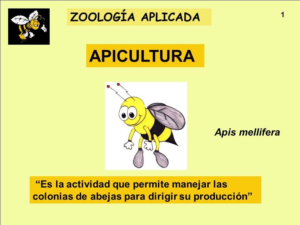 APICULTURA ZOOLOGÍA APLICADA Apis mellifera