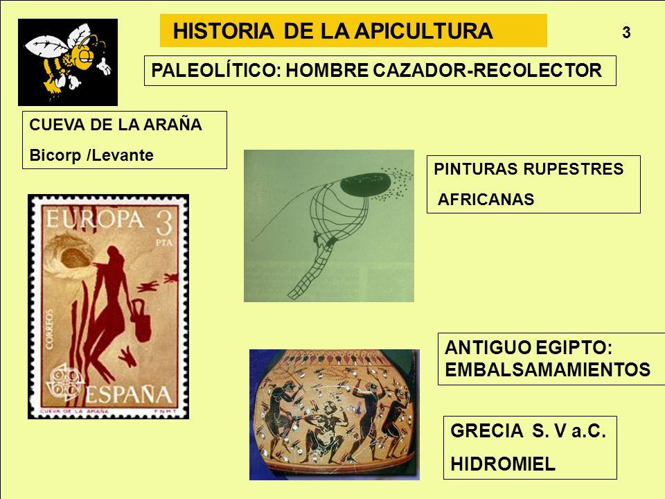 HISTORIA DE LA APICULTURA