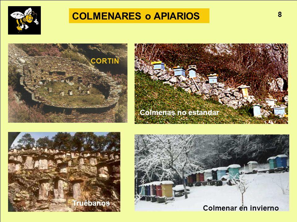 COLMENARES o APIARIOS 8 CORTIN Colmenas no estandar Truébanos