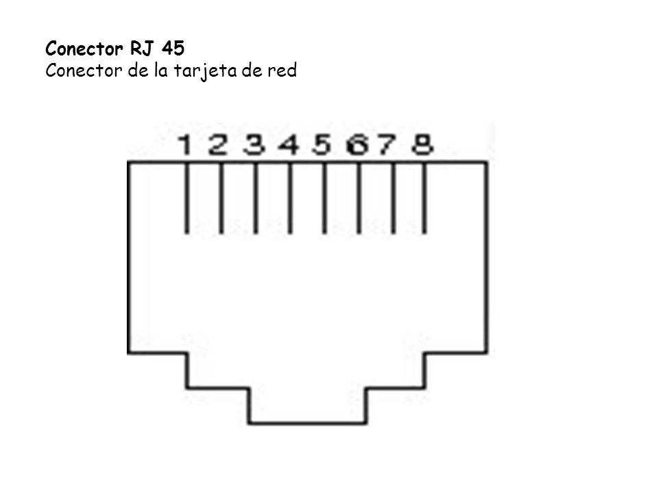 Conector RJ 45 Conector de la tarjeta de red