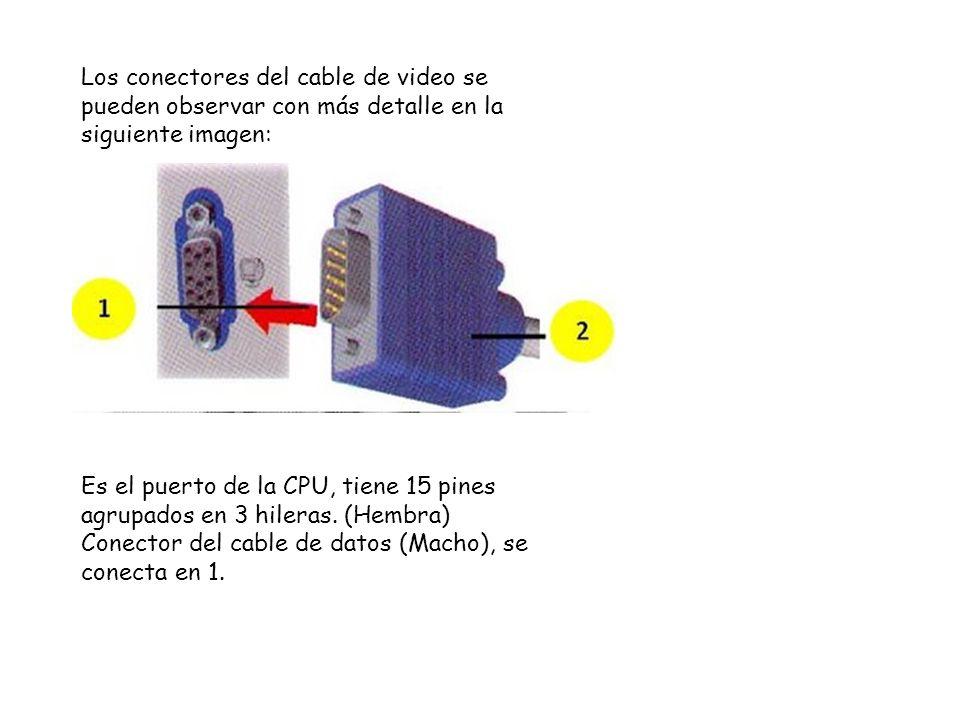 Los conectores del cable de video se pueden observar con más detalle en la siguiente imagen: