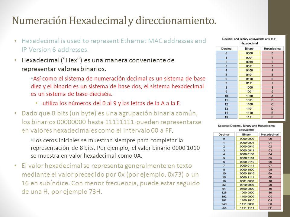 Numeración Hexadecimal y direccionamiento.