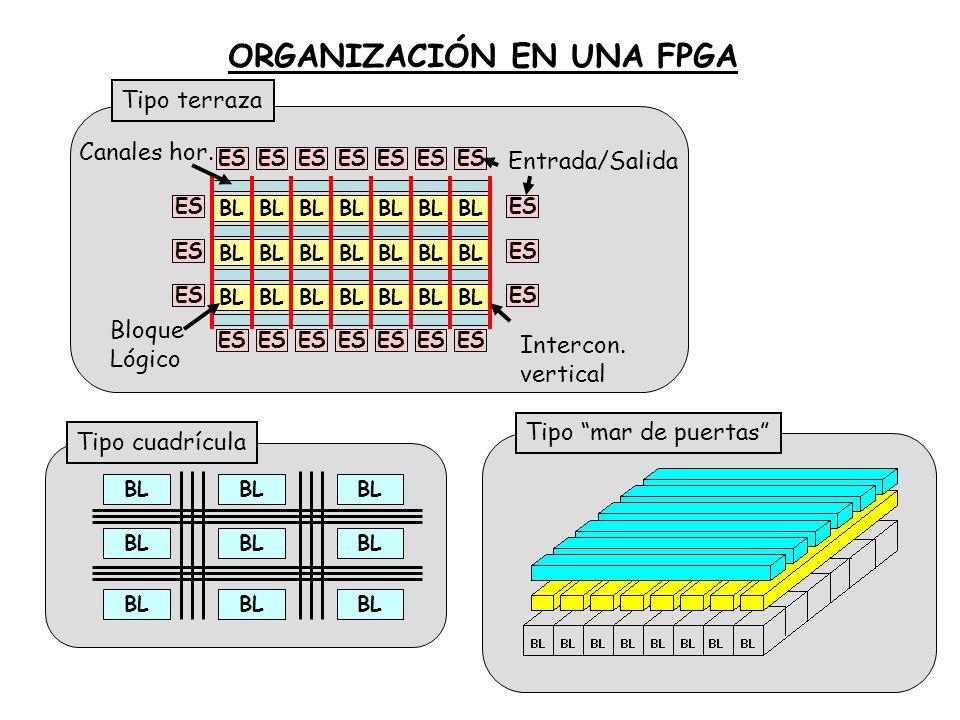 ORGANIZACIÓN EN UNA FPGA
