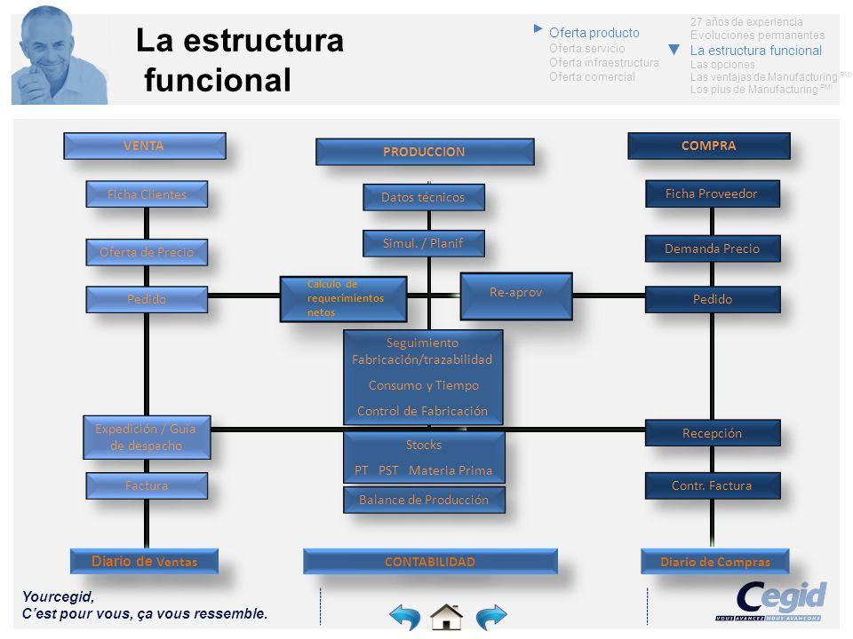 La estructura funcional