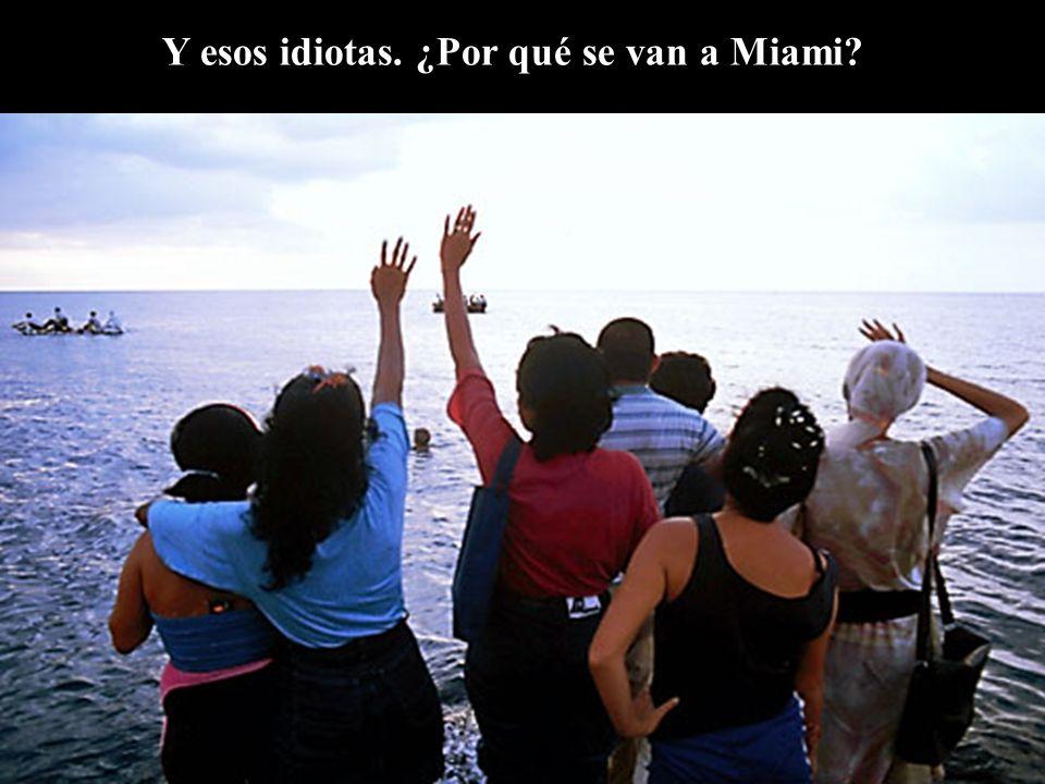 Y esos idiotas. ¿Por qué se van a Miami