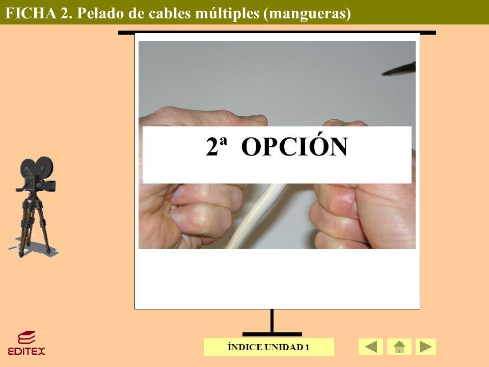 2ª OPCIÓN FICHA 2. Pelado de cables múltiples (mangueras)