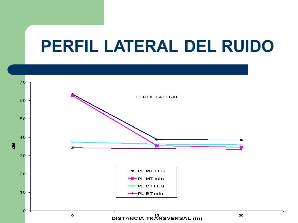 PERFIL LATERAL DEL RUIDO