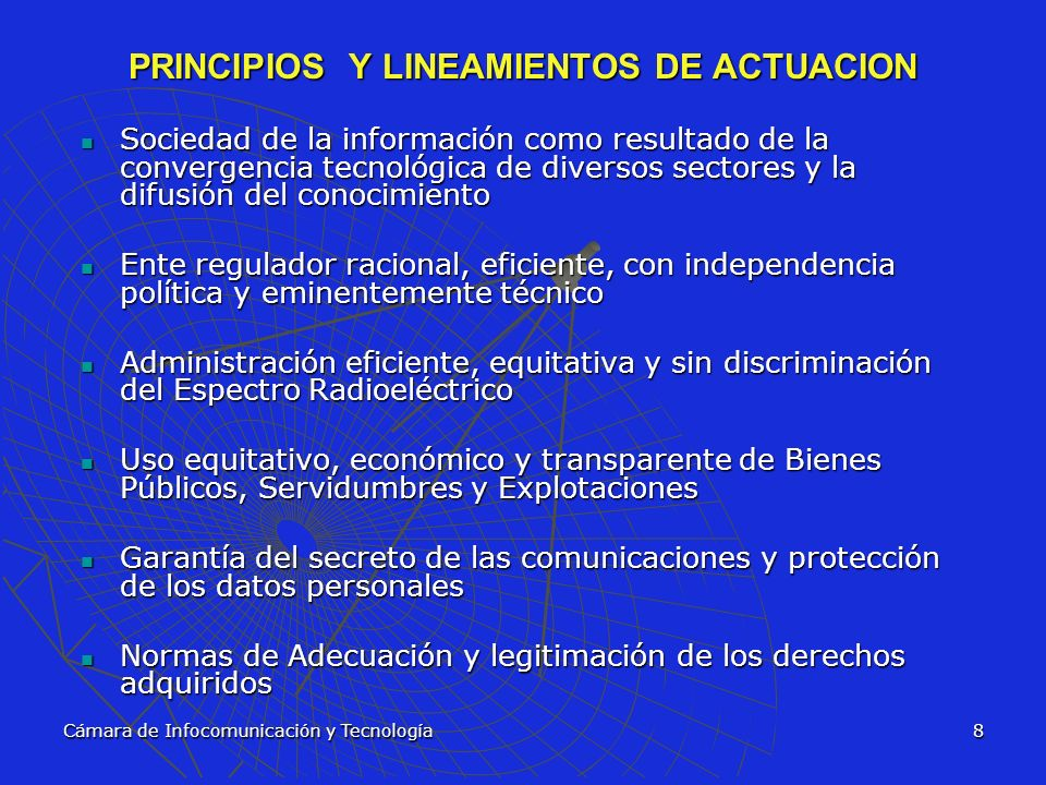 PRINCIPIOS Y LINEAMIENTOS DE ACTUACION