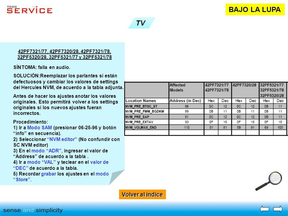 BAJO LA LUPA TV Volver al índice