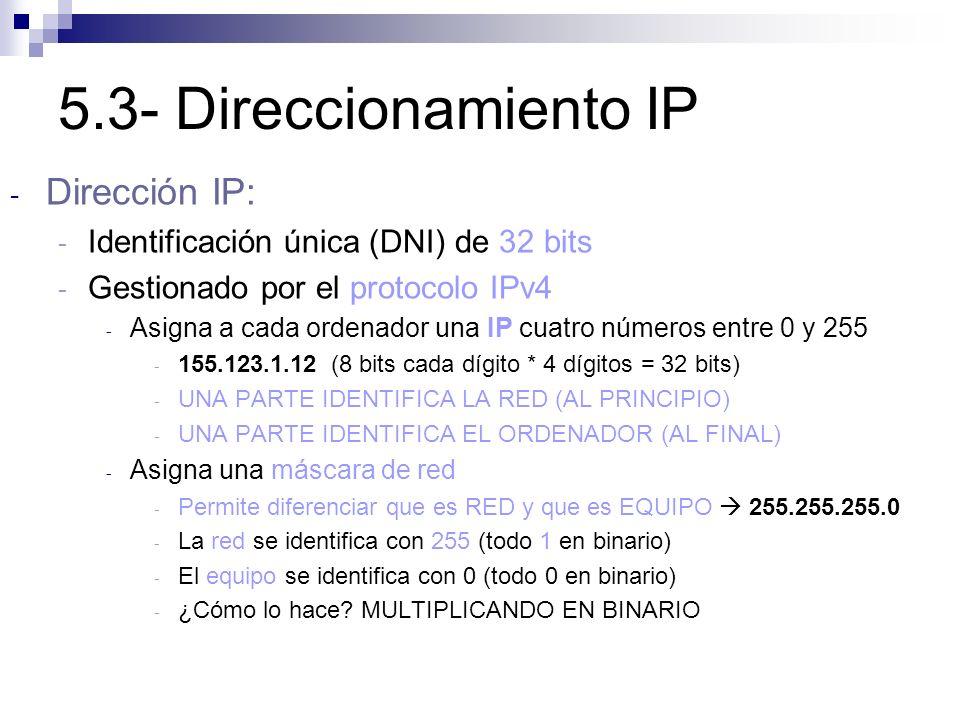 5.3- Direccionamiento IP Dirección IP: