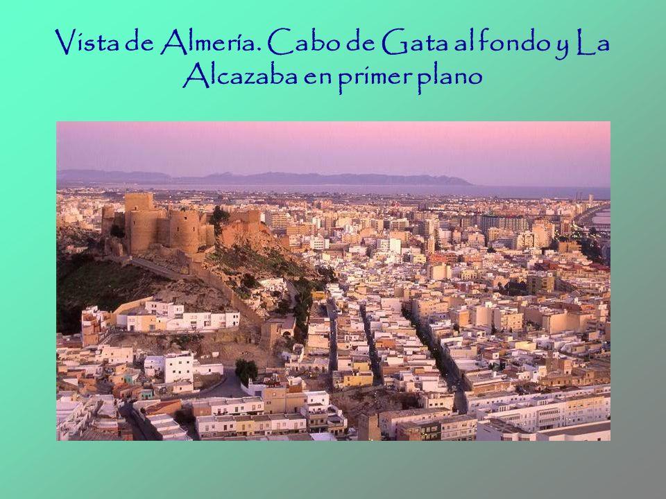 Vista de Almería. Cabo de Gata al fondo y La Alcazaba en primer plano