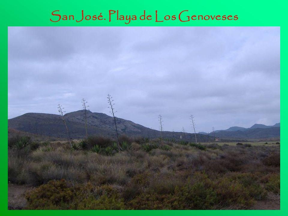 San José. Playa de Los Genoveses