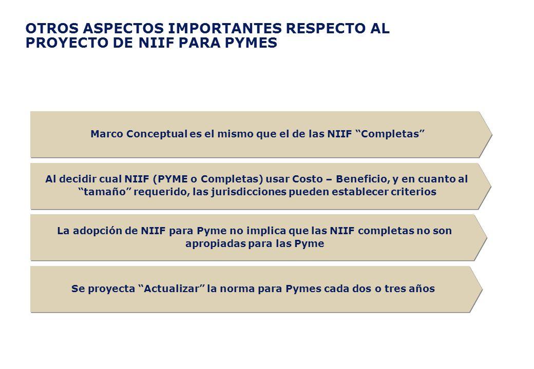 OTROS ASPECTOS IMPORTANTES RESPECTO AL PROYECTO DE NIIF PARA PYMES