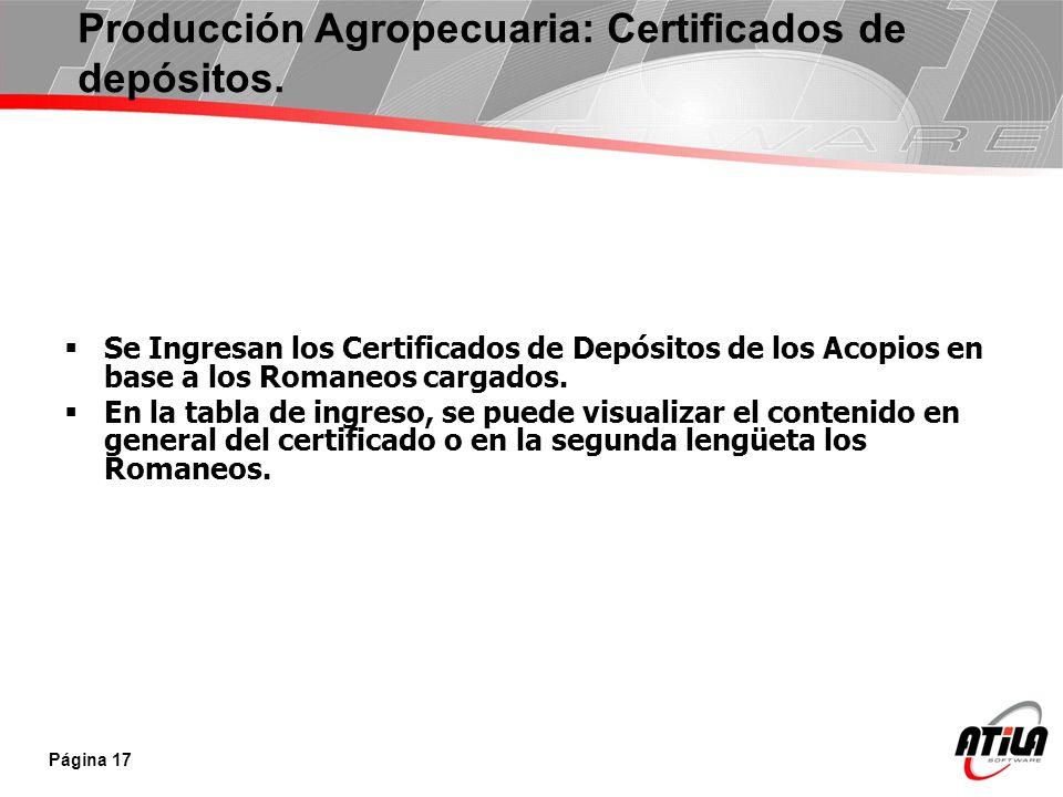 Producción Agropecuaria: Certificados de depósitos.