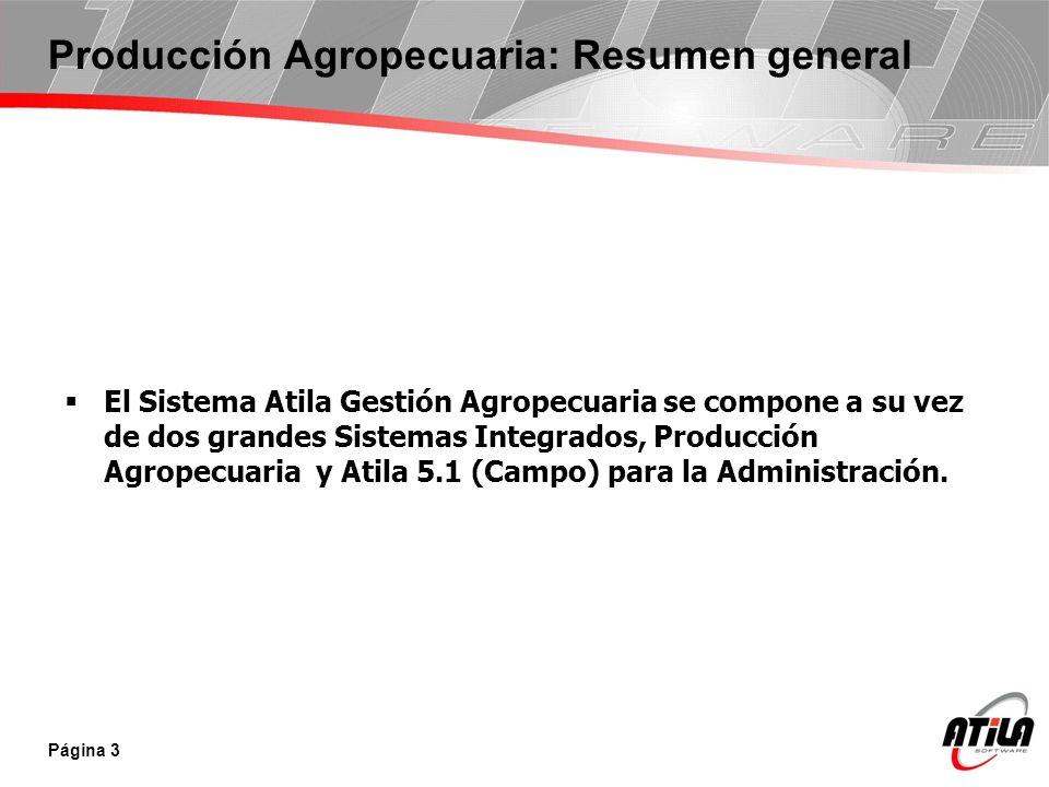Producción Agropecuaria: Resumen general
