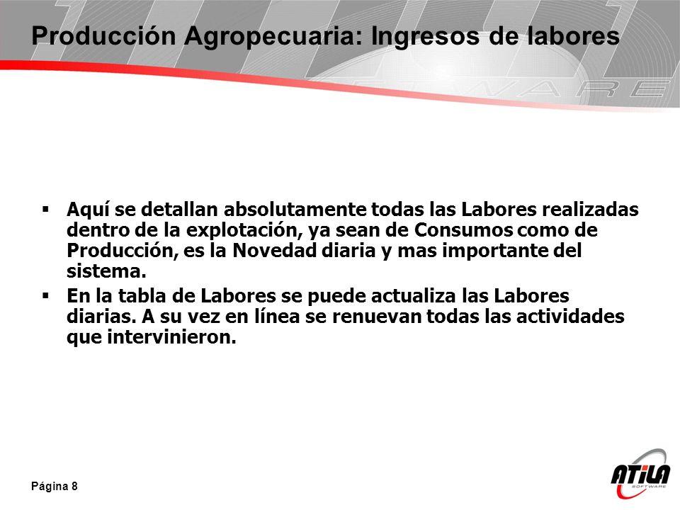 Producción Agropecuaria: Ingresos de labores