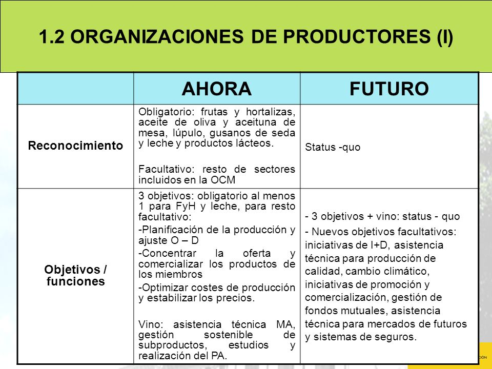 1.2 ORGANIZACIONES DE PRODUCTORES (I)