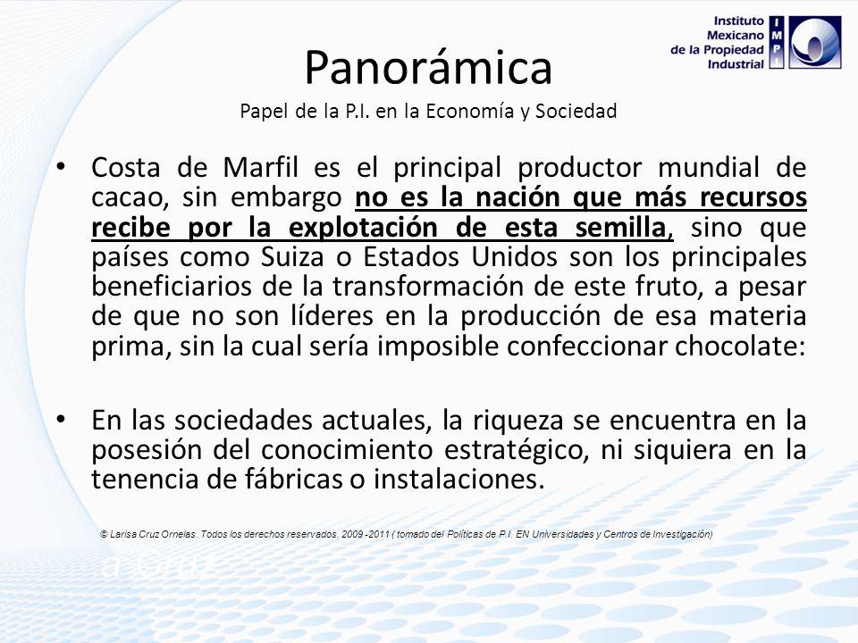Panorámica Papel de la P.I. en la Economía y Sociedad