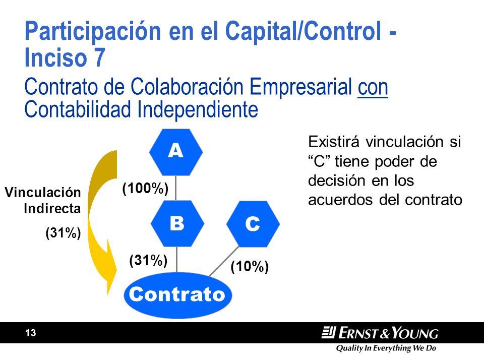 Participación en el Capital/Control - Inciso 7