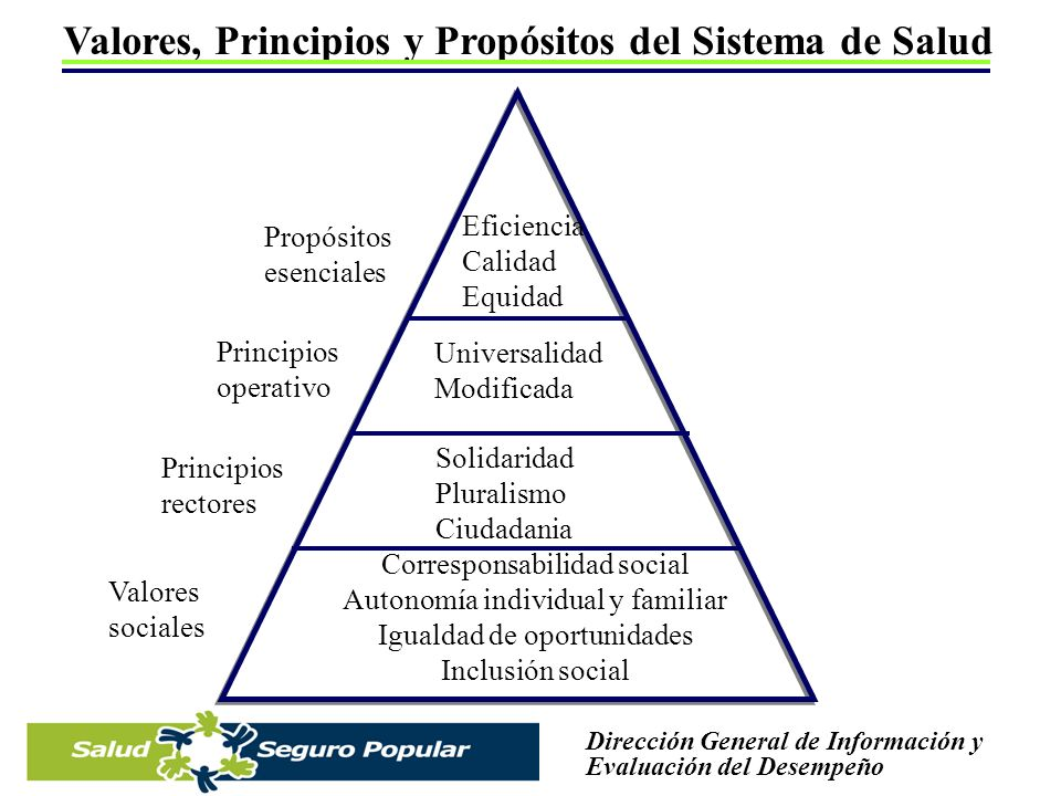 Valores, Principios y Propósitos del Sistema de Salud