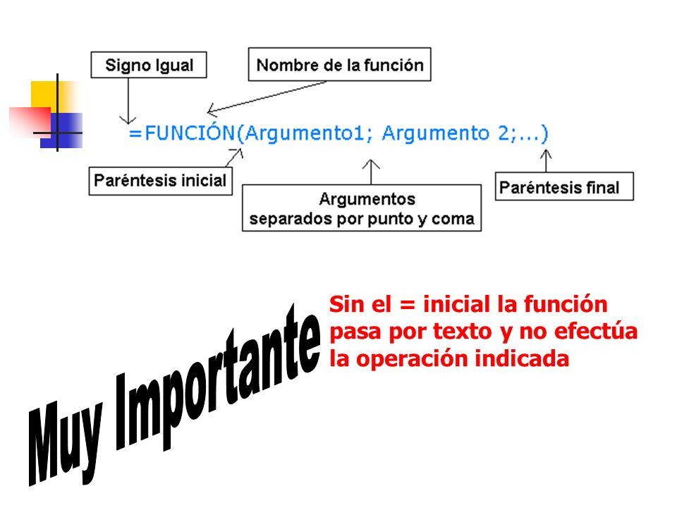 Sin el = inicial la función pasa por texto y no efectúa la operación indicada