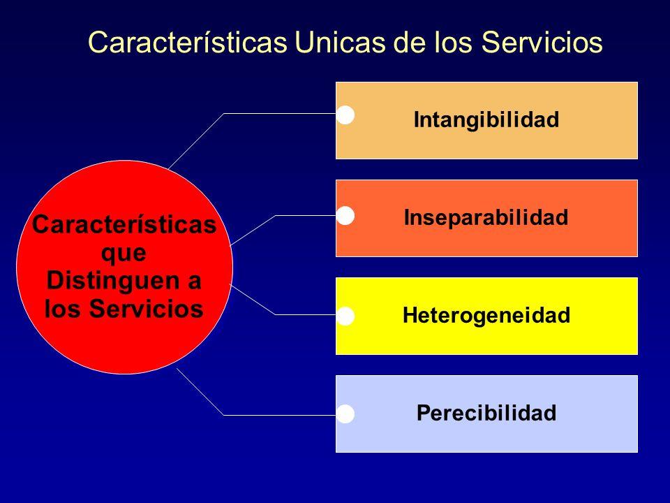 Características Unicas de los Servicios