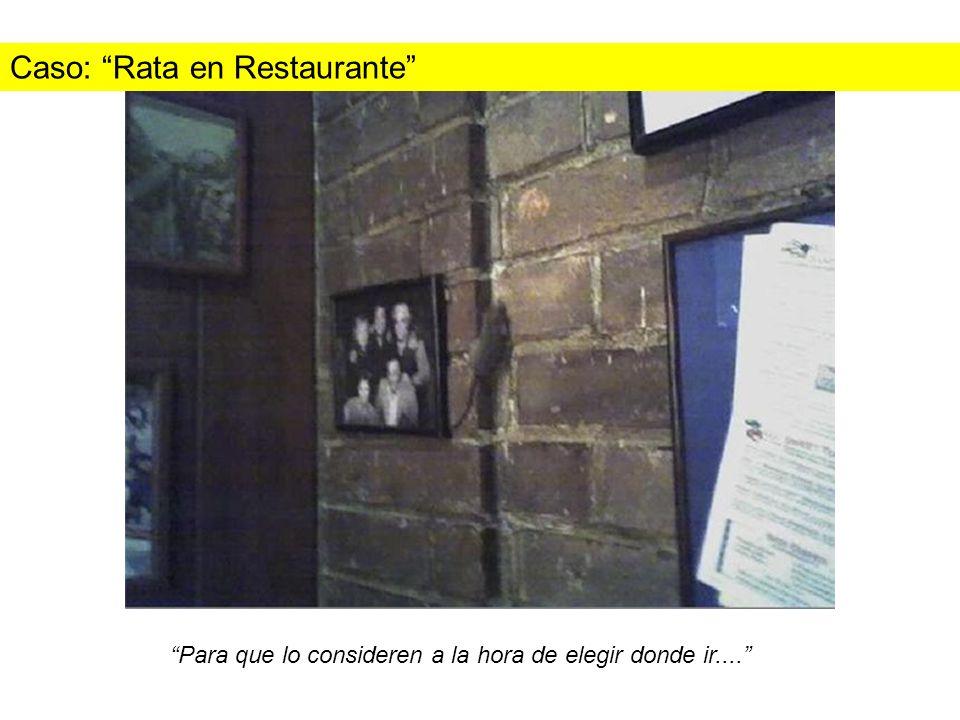 Caso: Rata en Restaurante